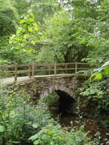 puente_chorron